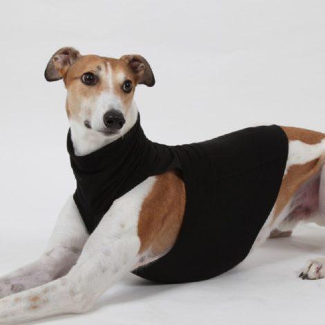 Camiseta DG DogGear  Extra Warm para lebreles.