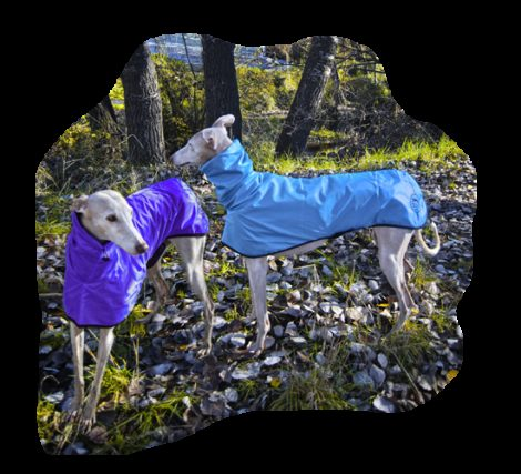 Impermeable ligero para galgos, podencos y whippet