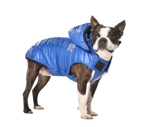 Abrigo impermeable para perro modelo Studio de Bobby