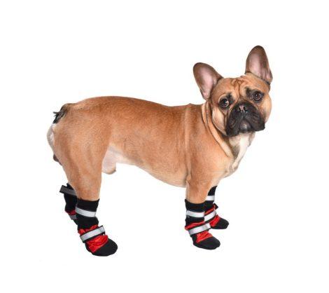 Botas de deporte para perro modelo Sport
