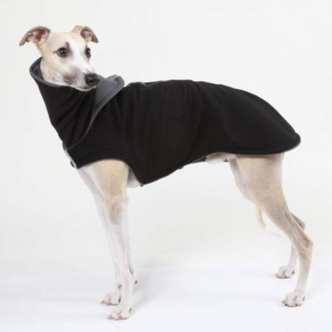 Cuellos tipo buff para proteger del frío a galgos, podencos, whippet y piccolo