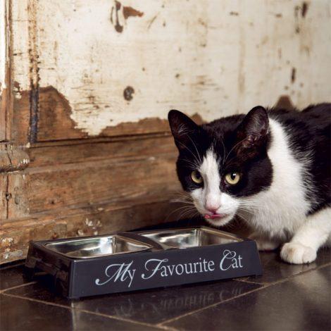 Comedero y bebedero doble para gato My Favourite Cat