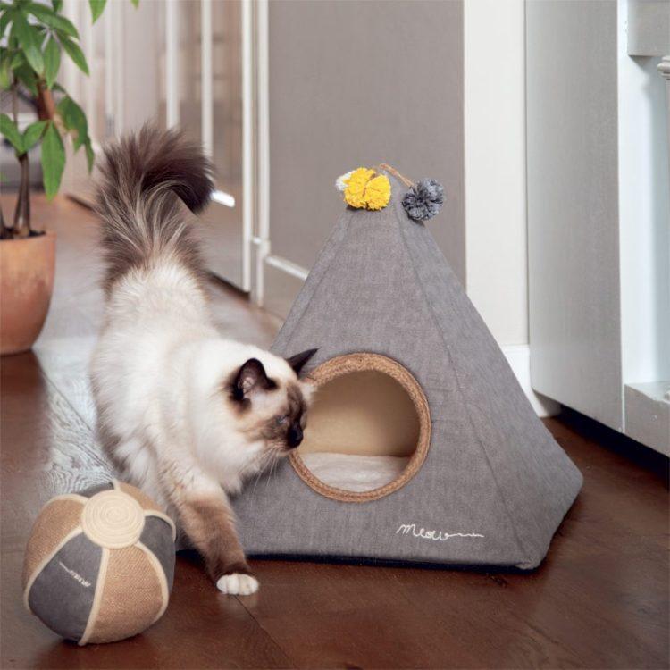 Tipi para gato y perro pequeño