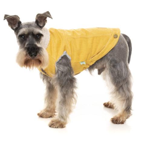 Jacket Rebel mostaza Fuzzyard perros