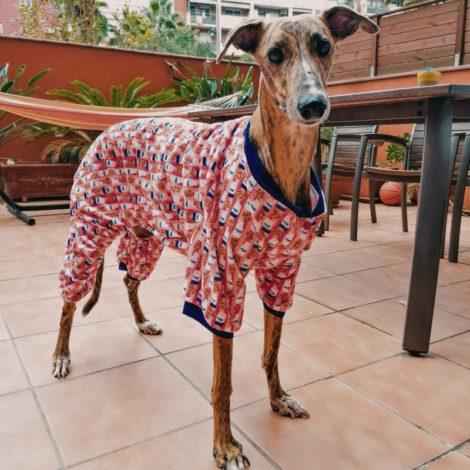 pijama Fuzzyard 1