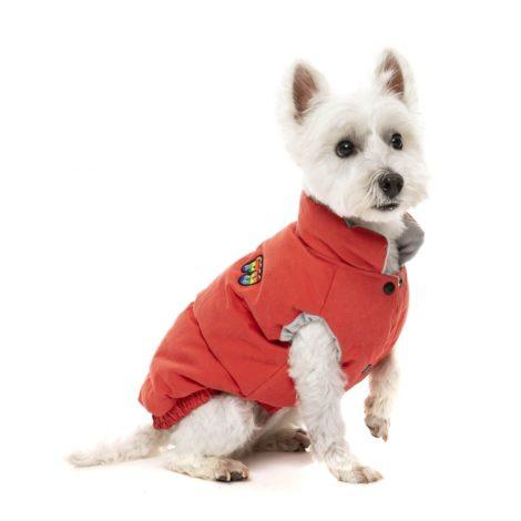 fuzzyard_AshburyJacket_VintageRed_Dog02