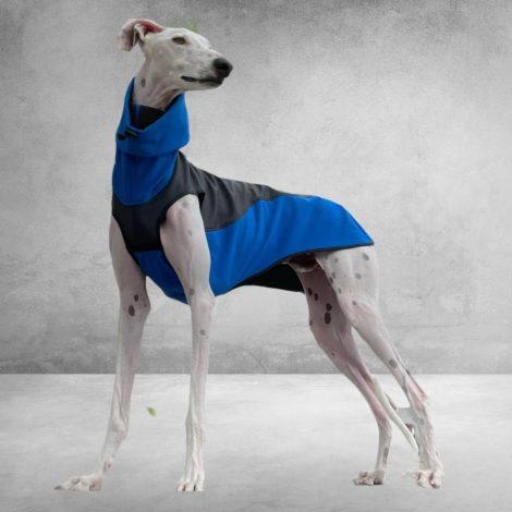 abrigo impermeable azul galguita amelie