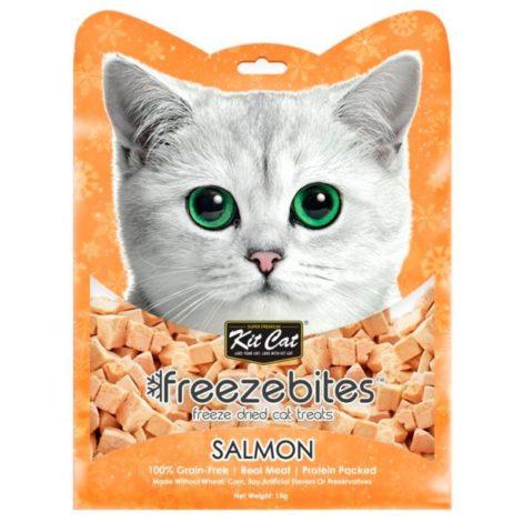 freezebites-salmon_1024x1024@2x